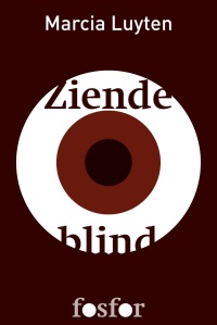 ebook titel ziende blind